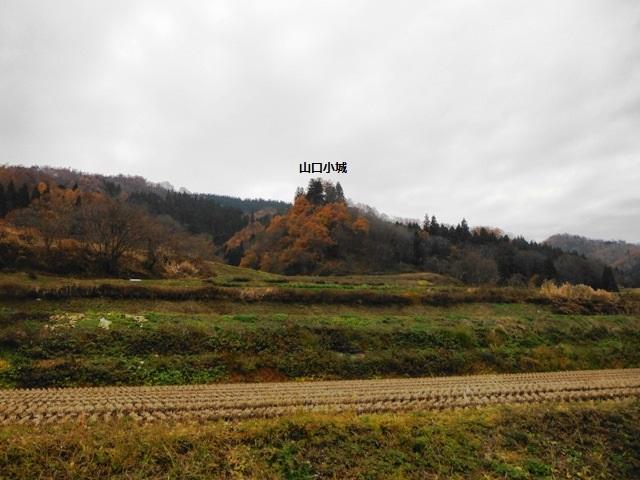 山口城の小城 (63)