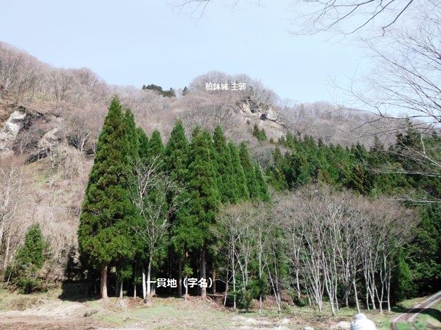 柏鉢城御旅屋 (4)