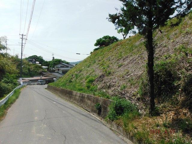 古城館跡(丸子町) (2)