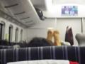 列車内で前の背もたれに足を乗せる朝鮮人