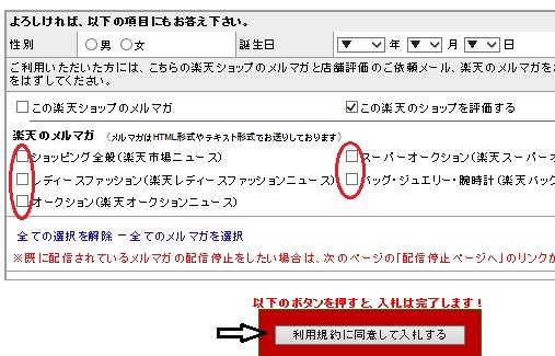 楽天オークション入札手順6