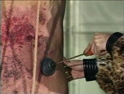 M男の腹部に押し当てられる焼印