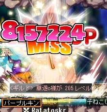 Maple150504_053229.jpg