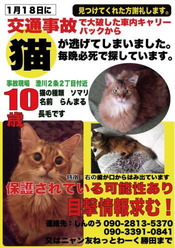 繧峨s縺セ繧祇convert_20150413183941