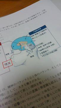 yuica②-1