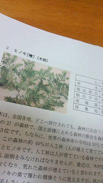yuica②-2