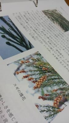yuica④-1