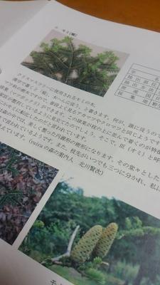 yuica⑤-1