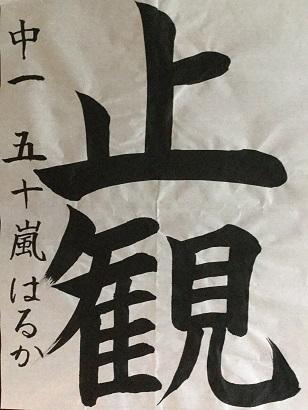 IMG_0351 (2)