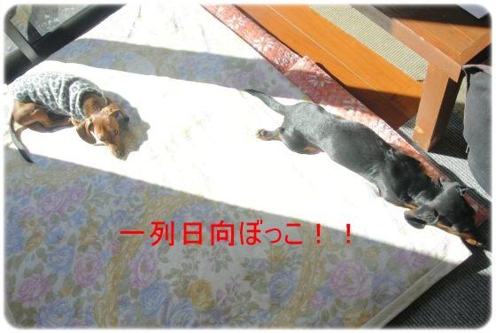 DSC_7763.jpg