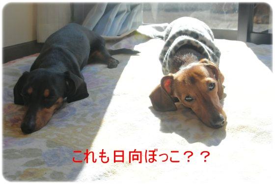 DSC_7765.jpg