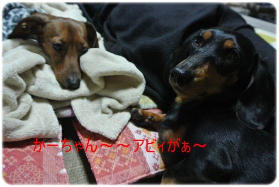 DSC_7769.jpg