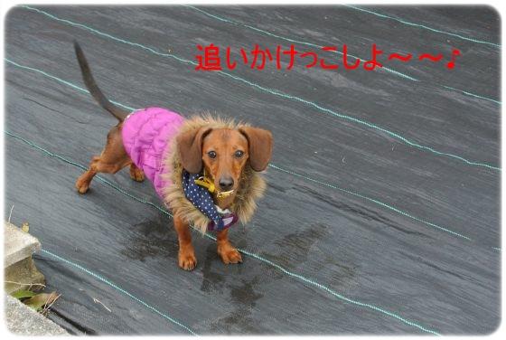 DSC_7804.jpg