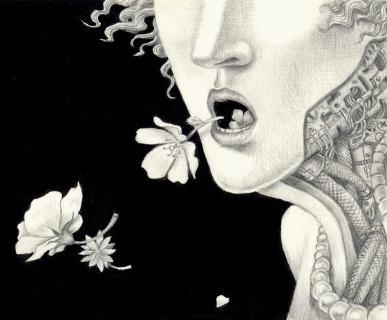 花の声UP