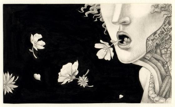 花の声全体図