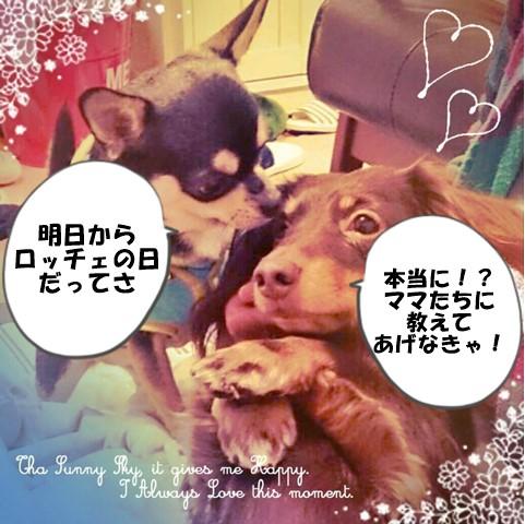 2015-06-05 ちまき ノエル