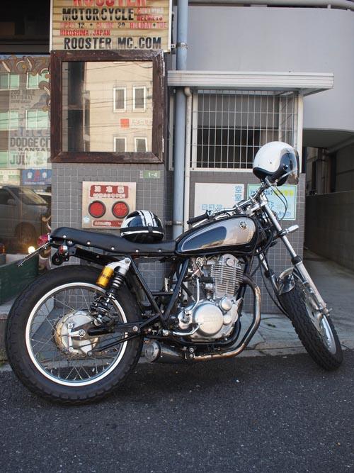 P4265435.jpg