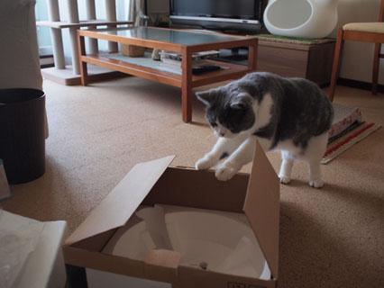この箱は!