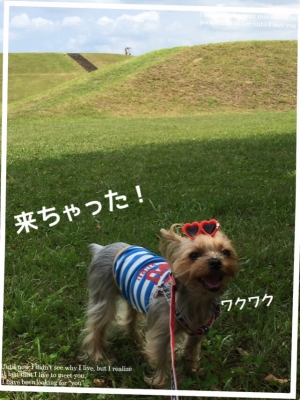 201506211819268ea.jpg