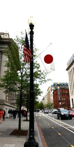 米ワシントンのあちこちで星条旗と日章旗が並んでいる