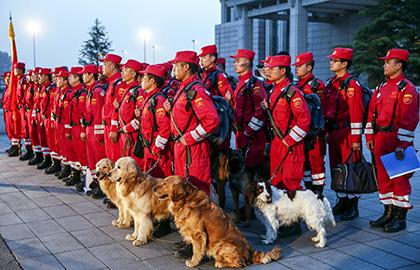 地震の翌日に派遣された中国の救助隊員と救助犬