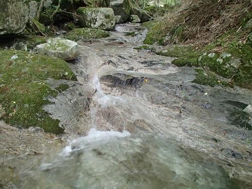 樅の木沢のナメ
