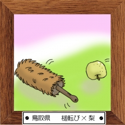 31鳥取県 槌転び×梨
