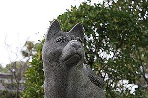 12U・ω・)犬san
