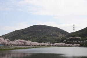15鎌田池1