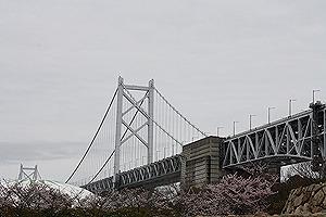 瀬戸大橋と桜2