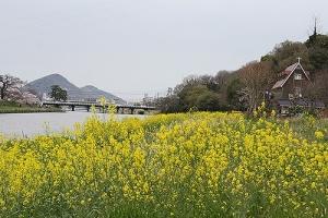 通りすがりの香東川3