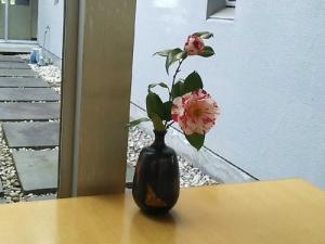 仕事と菜の花6