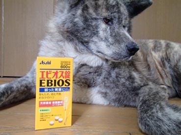 エビオス2