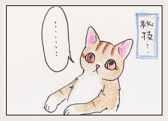 comic_4c_150607009.jpg