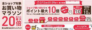 150211raku - コピー
