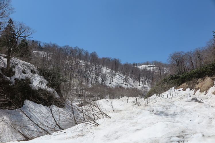 2015-0514-011.jpg