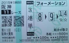 2015阪神大賞典