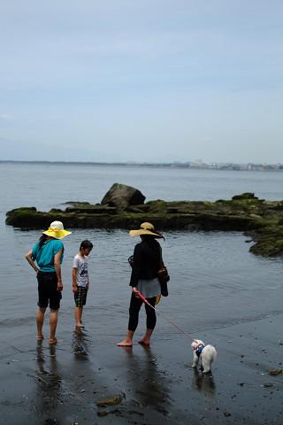 FD3520SSCと江の島
