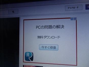 P1140014.jpg