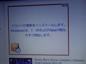 P1140015.jpg