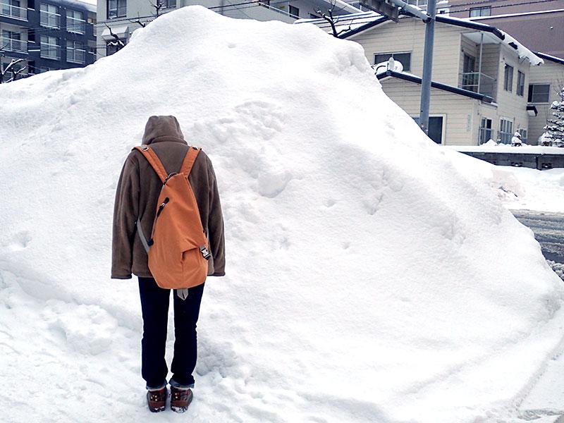 道路と歩道の間の雪