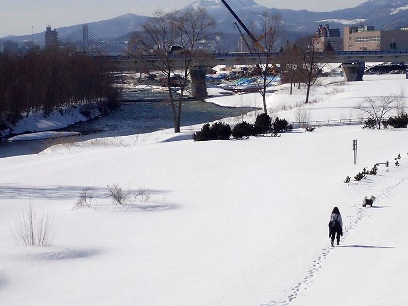 幌平橋より撮影