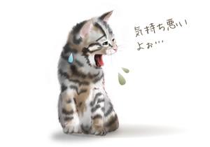 cat_haku.jpg