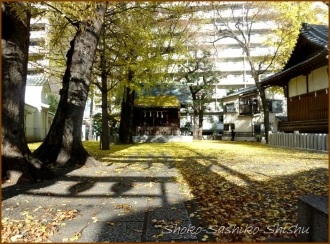 20131217 神社 1 冬のいろどり