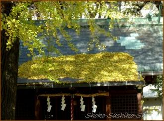 20131217 神社 2 冬のいろどり