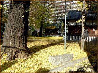 20131217 神社 3 冬のいろどり