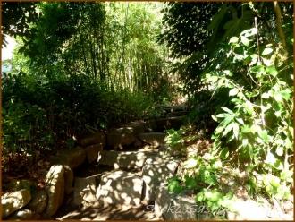 20141222 石の階段  芭蕉庵