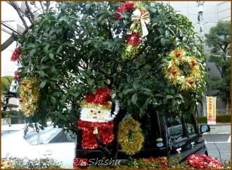 20141224 駐車場  クリスマス