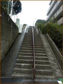 20150122 階段 小田急に乗って