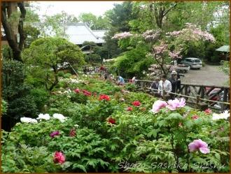 20140424 全景 2 東長谷寺